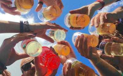 Carnaval! Beter bier of wijn?