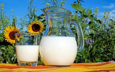 Yoghurt en melk, goed voor elk?